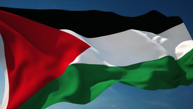 4 k palestina bandiera-ad anello - striscia di gaza video stock e b–roll