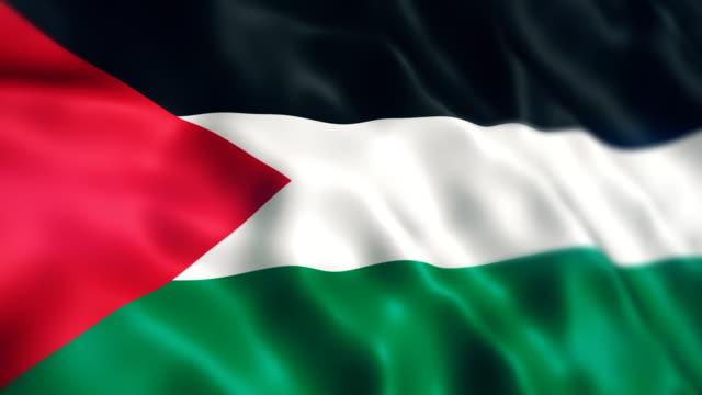 palestine flag - palestinian flag stock videos & royalty-free footage