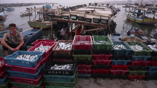 palestinian fishermen back to gaza city port from the sea with fish, after israel-hamas ceasefire deal, israel fully reopen fishing zone. september... - ceasefire stock videos & royalty-free footage
