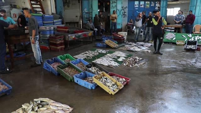 vídeos de stock, filmes e b-roll de palestinian fishermen display fish for sale after a night long fishing trip, in fish market in gaza city on november 9, 2020. - número 9