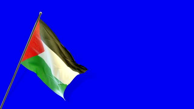 palestinian  flag rising - palestinian flag stock videos & royalty-free footage