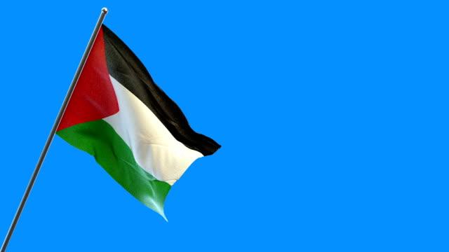 palestinian flag - palestinian flag stock videos & royalty-free footage