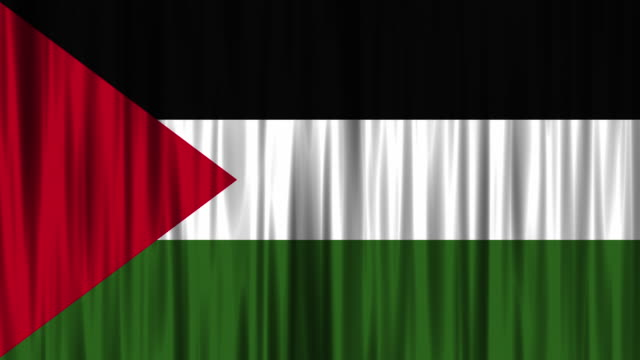 palestinian national flag background (loopable) - palestinian flag stock videos & royalty-free footage
