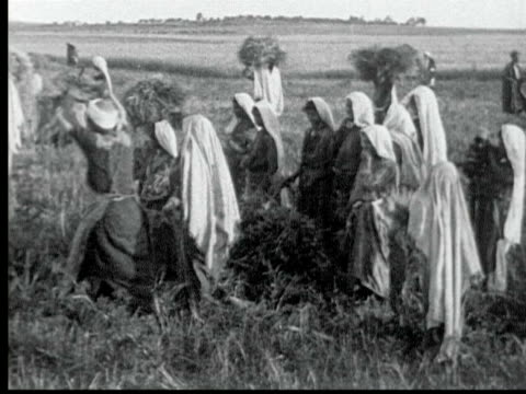 1925 B/W MONTAGE Palestinian women + men working in field harvesting wheat / Bethany, Palestine