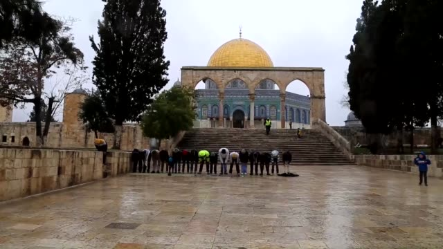 vídeos de stock, filmes e b-roll de palestinians perform friday prayer at al-aqsa mosque although cold and rainy weather in jerusalem on 9 january, 2015. some muslims perform friday... - jerusalém