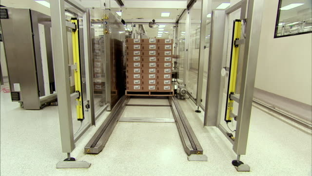 ws pallet full of stacked packages rolling off assembly line, boxmeer, netherlands - boxmeer video stock e b–roll