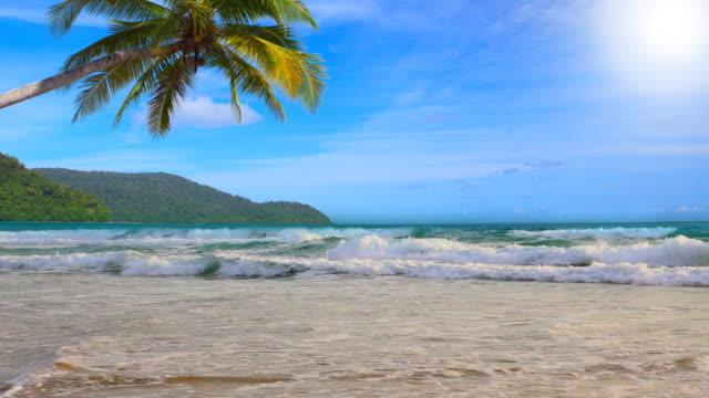 Palm Sonne und Meer