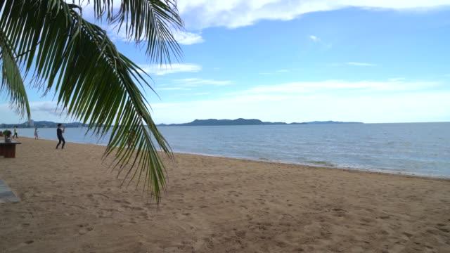 Palm and tropical beach at Pattaya