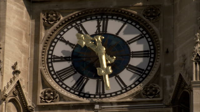 palm fronds wave in front of the clock of vienna rathaus. available in hd. - roman numeral stock videos & royalty-free footage