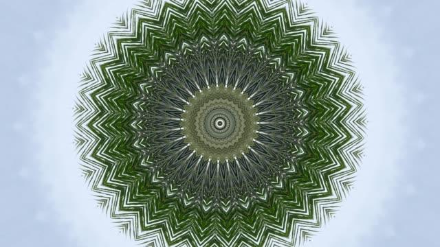 Palmblatt in Haleidoscope Effekt und weißen Hintergrund 4k