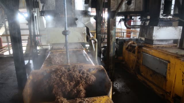 Palm oil falls onto a filtering screen in a tank inside a processing facility at the Mong Reththy Investment Cambodia Oil Palm Co oil palm plantation...