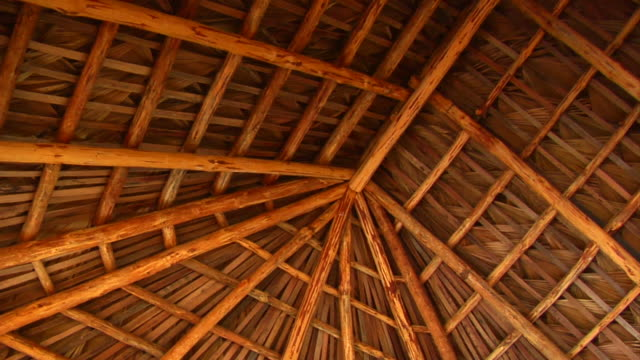 palm roof thatching