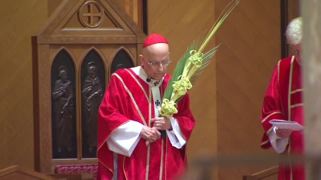 palm sunday at holy name cathedral lead by ailing cardinal francis george on april 13 2014 in chicago illinois - cardinal clergy stock videos and b-roll footage