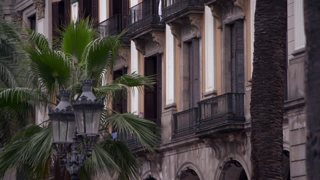 palm tree and decorative street lights before a decorative fa�ade of yellow and white with wrought iron balconies in sunshine - barcelona, spain - palm tree stock videos & royalty-free footage