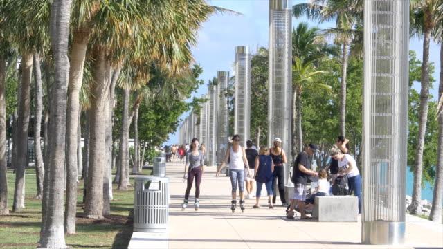 vídeos y material grabado en eventos de stock de palm tree and skater - miami