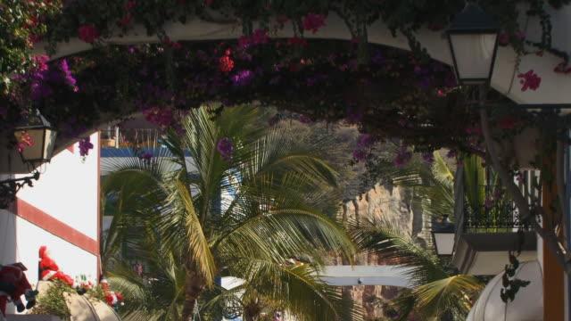 vídeos de stock, filmes e b-roll de ms palm tree/ zo ws archway between houses covered with bougainvillea/ puerto de mogan, grand canary, canary islands - arbusto tropical