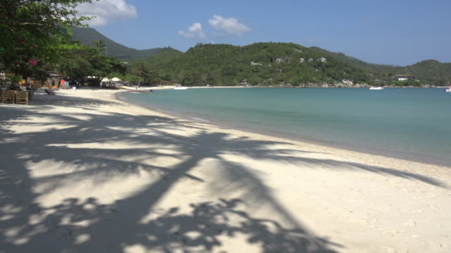 palm tree shadow on sandy beach - gulf of thailand stock videos & royalty-free footage