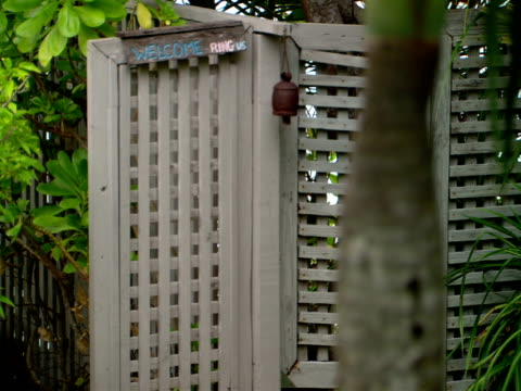 stockvideo's en b-roll-footage met cu,  r/f, palm tree trunk and garden gate,  harbour island,   bahamas - waaierpalm