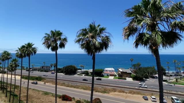 Palmbomen langs de kust