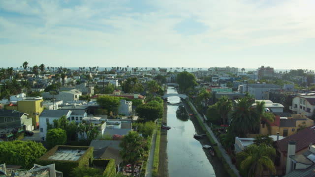 Palm Trees Along the Waterways in Venice Canal Historic District - Drone Shot