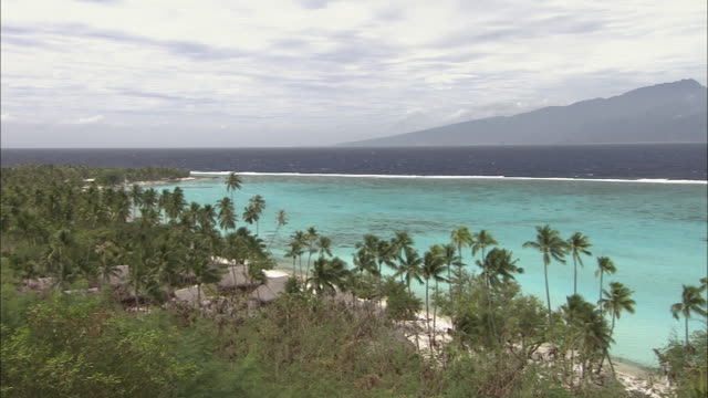 vidéos et rushes de ws, ha, pan, palm trees and huts along coastline, tahiti, french polynesia - polynésie française