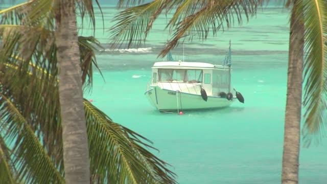 stockvideo's en b-roll-footage met palm trees and moored boat in maldives - bedektzadigen