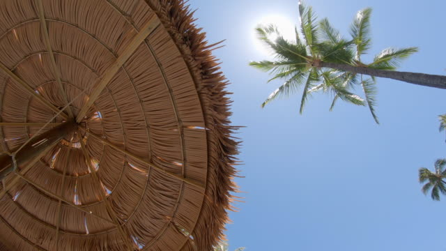 palm trees and palm frond shade umbrellas provide shade in maui, hawaii. - slow motion - strohdach stock-videos und b-roll-filmmaterial