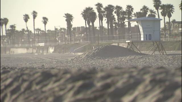 palm trees and sand surround a beach lifeguard station. - cabina del guardaspiaggia video stock e b–roll