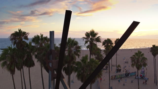 vidéos et rushes de palm trees and sculpture on venice beach - drone shot - venice californie