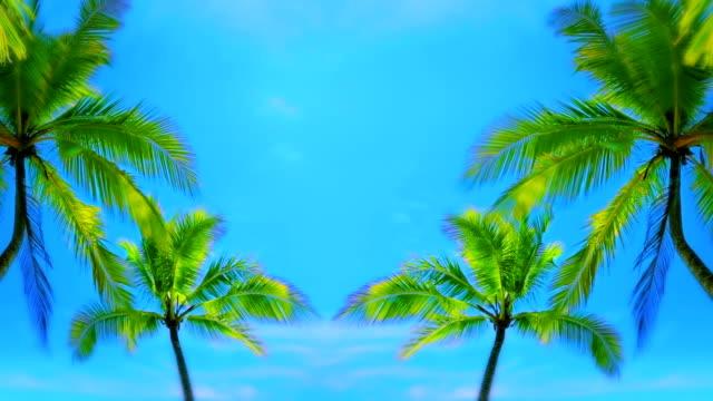 Palmen und Himmel.