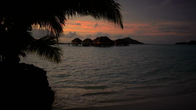 palm trees at sunrise paradise lagoon bora bora - polynesiskt ursprung bildbanksvideor och videomaterial från bakom kulisserna