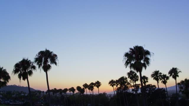 カリフォルニア州サンタ ・ バーバラで夕暮れのヤシの木 - サンタバーバラ点の映像素材/bロール