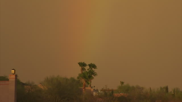 vídeos y material grabado en eventos de stock de palm trees blowing in strong wind, camera zooms out to reveal sand storm approaching town, arizona, usa - vendaval de polvo