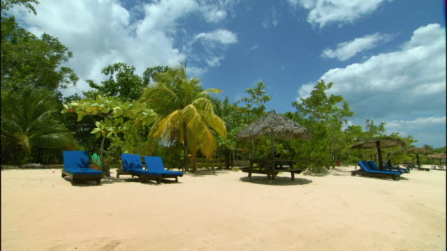 ws palm trees blowing in wind above lounge chairs on beach / ocho rios, jamaica - jamaica stock videos and b-roll footage