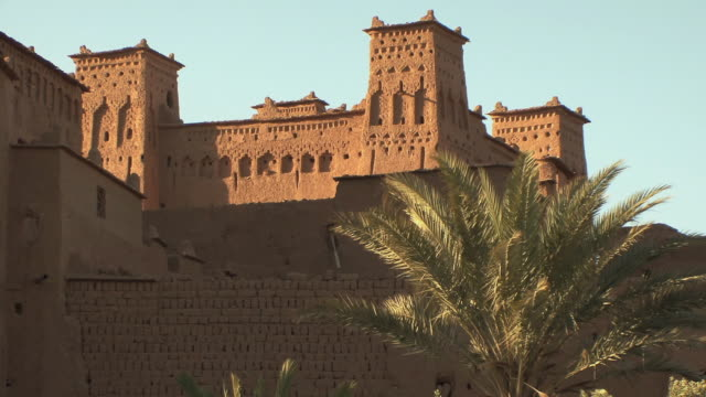 ws la palm trees blowing in wind outside ancient fortified city, souss massa draa, morocco - fortress stock videos & royalty-free footage