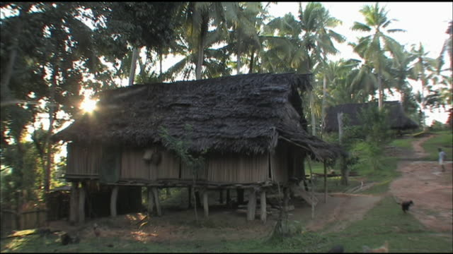 palm trees border stilted huts in papua new guinea. - papua new guinea stock videos & royalty-free footage