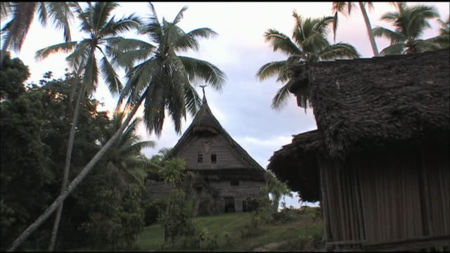 palm trees border thatched huts in papua new guinea. - papua new guinea stock videos & royalty-free footage