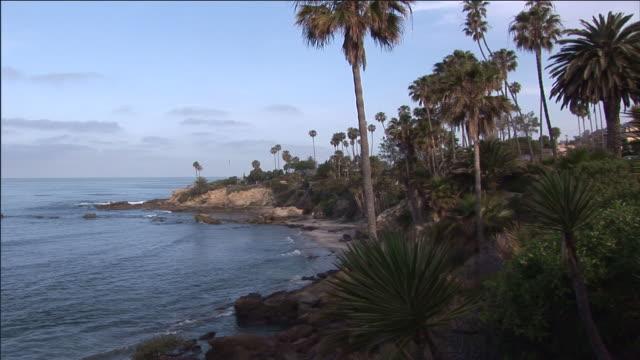stockvideo's en b-roll-footage met palm trees follow the pacific shoreline near laguna beach. - laguna beach californië