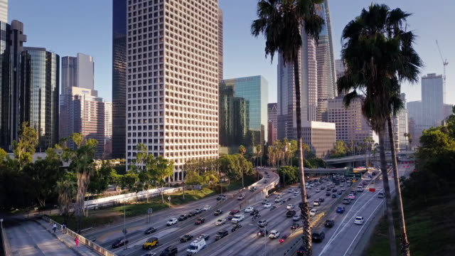 palm trees, freeways and skyscrapers in downtown la - los angeles bildbanksvideor och videomaterial från bakom kulisserna