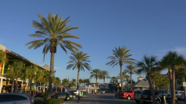 Palm trees in a market in St. Petersburg at Sunset, Florida