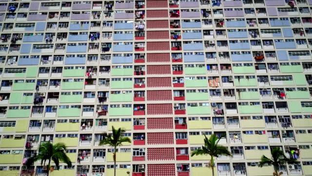 palm trees in front of choi hung estate, hong kong - 高 物體描述 個影片檔及 b 捲影像