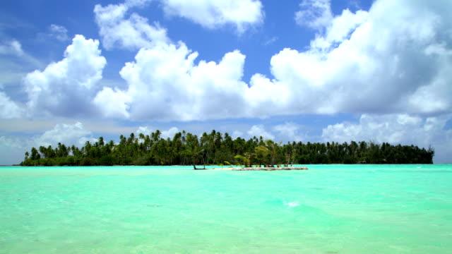 palm trees in tropical aquamarine lagoon bora bora - polynesian ethnicity stock videos & royalty-free footage