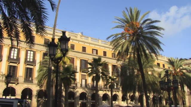 ms, pan, palm trees on courtyard, placa reial, barcelona, spain - fan palm tree stock videos & royalty-free footage