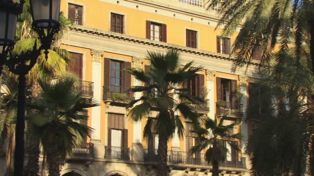 vídeos de stock, filmes e b-roll de zo, ms, palm trees on courtyard, placa reial, barcelona, spain - fan palm tree