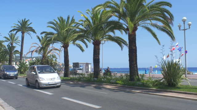 palm trees on the promenade des anglais - man made object stock videos & royalty-free footage