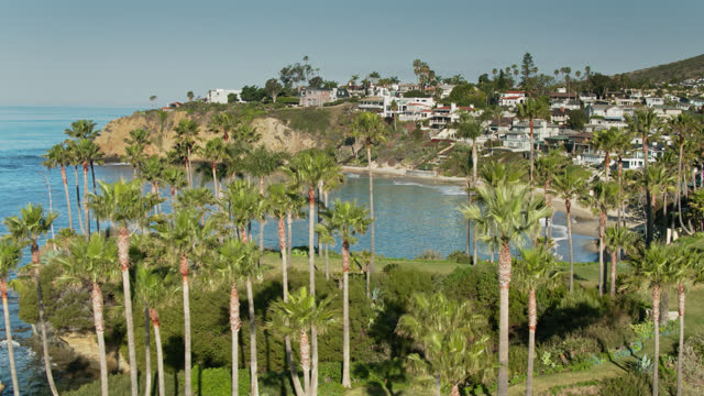 palm trees on twin points with clifftop houses in crescent bay beyond - laguna beach, ca - laguna beach california stock videos & royalty-free footage