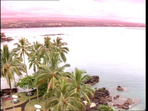 stockvideo's en b-roll-footage met palm trees overlook the ocean near a beach house. - bedektzadigen