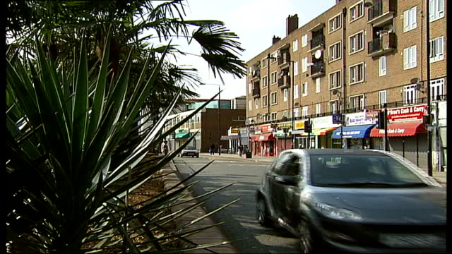 vídeos de stock e filmes b-roll de palm trees planted in peckham; england: london: peckham: ext general views of palm trees planted in central reservation of road bus stop sign and... - peckham