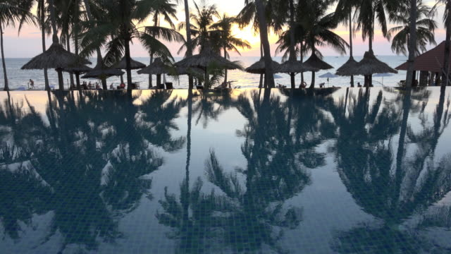 TU / Palm trees reflecting in pool at sunset at sea
