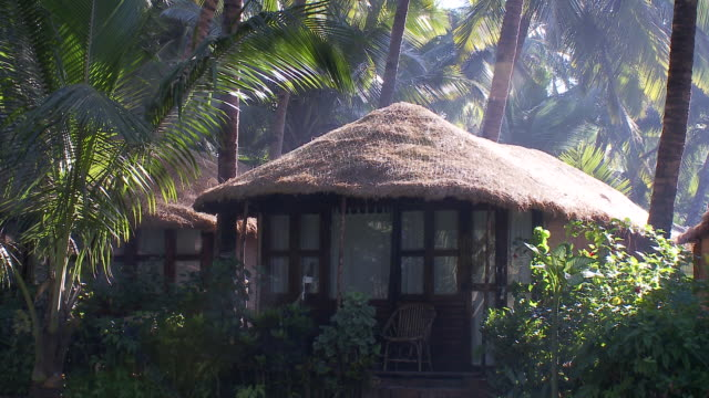 palm trees surround a beach cottage with a thatched roof. - thatched roof stock videos and b-roll footage